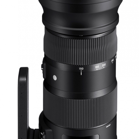 עדשה Sigma 150-600mm f/5-6.3 DG OS HSM Sports Lens